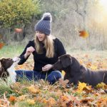 My Top Tips on Settling in your New Rescue Dog